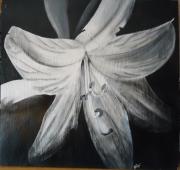Dessin D Une Fleur Avec Ombre Et Lumiere Galerie Creation